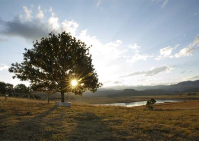 glencairn-farm-sunrise-wedding-venue